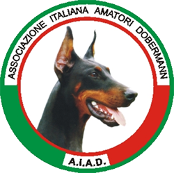 logo_aiad
