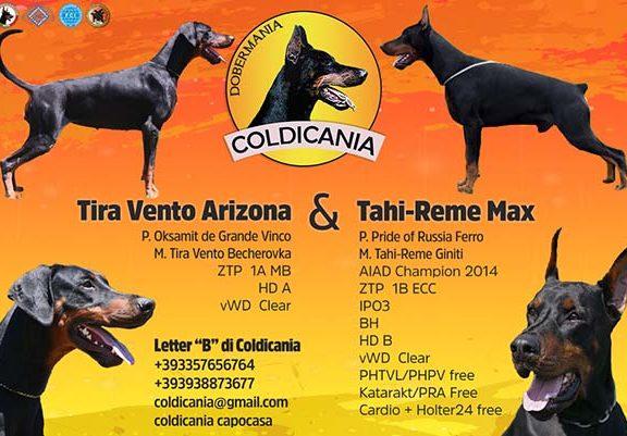 Coldicania - Cuccioli Agosto 2017
